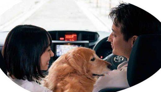 日本初!マイカーでドライブして広告収入!? ステッカーを貼るだけの副業
